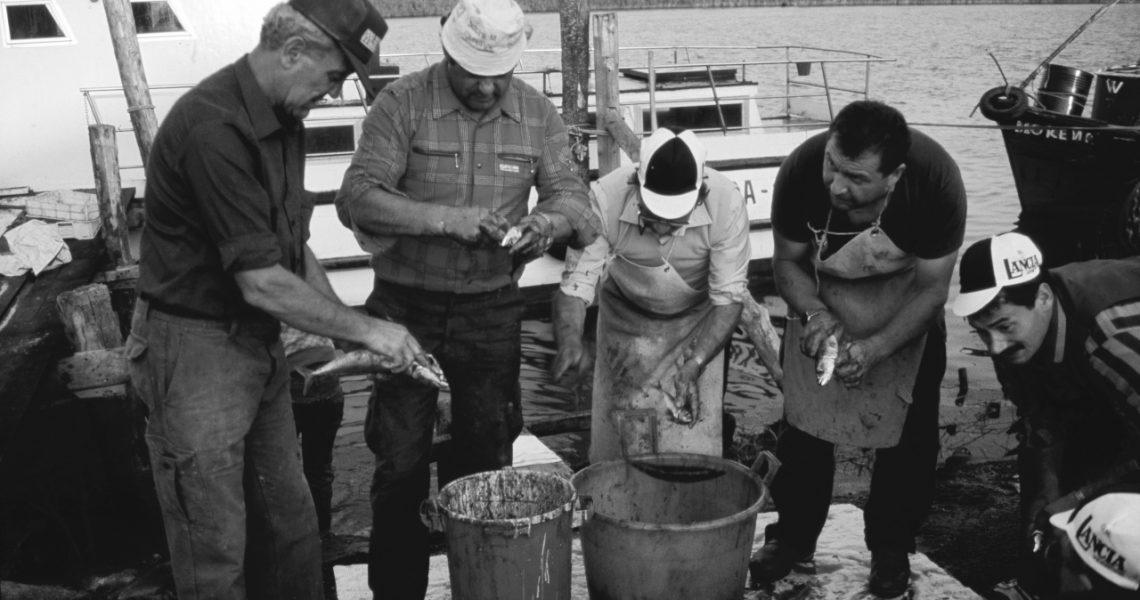 Il lavoro di squadra dei pescatori in tempi non sospetti